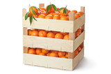 Three retail crates of ripe tangerines