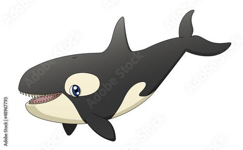 Orca Singing