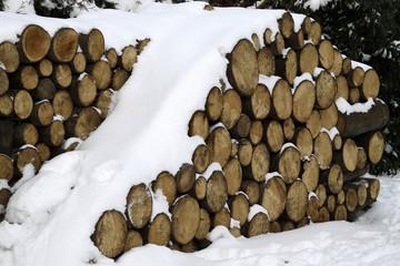 Brennholzstapel mit Schneehaube