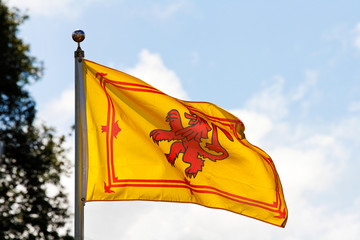 Scottish flag the Rampant Lion