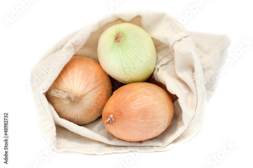 fresh onions in a sack isolated on a white background