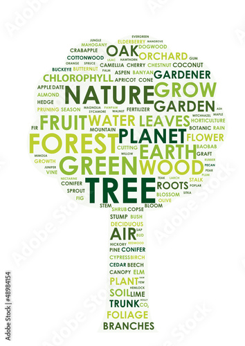 TREE tag cloud (gardening environmentally friendly recycle)