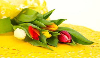 Bunte Tulpenknospen auf gelb