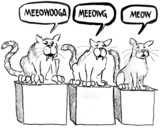 The three stages of cats and their meow. poster