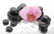 Spa stones and orchid flower, on wet background.