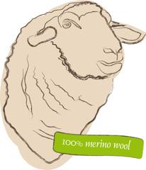 Merinowolle - Wolle - Schaf - Merino - Logo