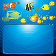 Underwater Sea Life Background