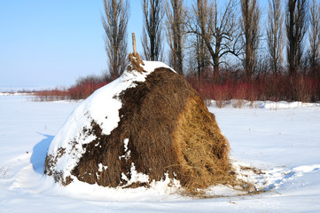 Haystack on the snow-bound field