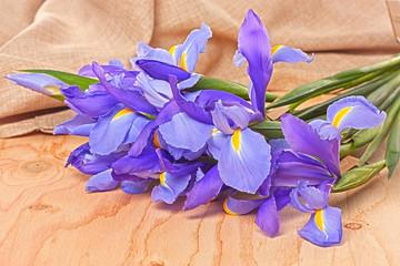 Iris flowers on wood background
