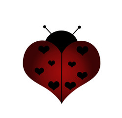 love lady bug with hearts on her wings