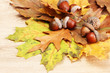 brown acorns on autumn leaves, on wooden background
