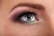 Beautiful female eye with bright  make-up, close up