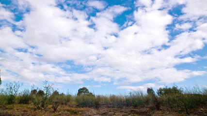 Cloudscape at Australian outback
