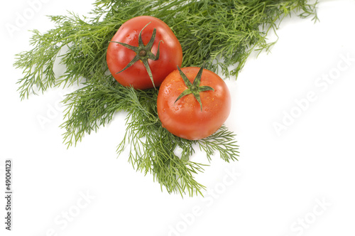 red tomato with fresh green coriander