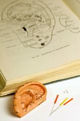 Ohrmodell, Akupunkturnadeln, und Lehrbuich