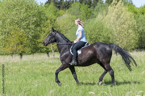 Ross und Reiterin