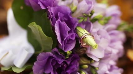 Bridal rings on the bud