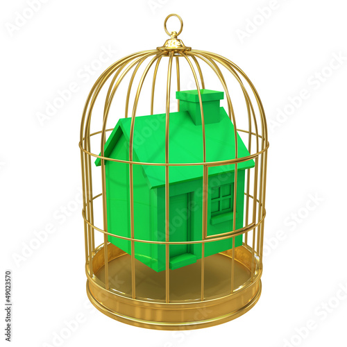 Birdcage with green house inside