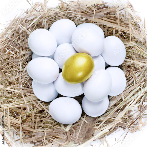 Golden egg in common nest