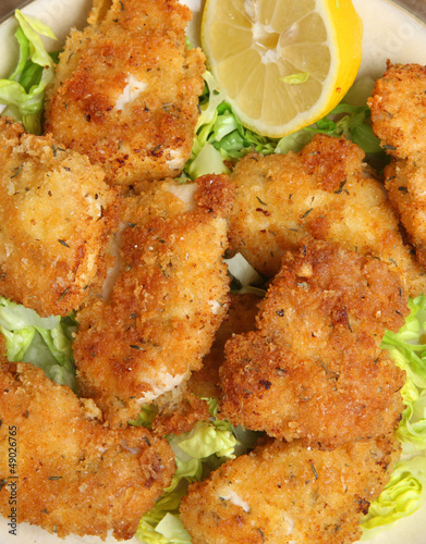 Italian Breaded Chicken with Parmesan Cheese