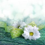 Fototapety Weiße Blüten auf Holz mit Textfreiraum