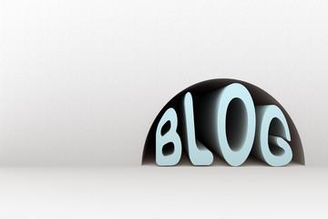 a niche occupied by blog