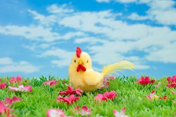 gelbes Küken auf grüner Wiese mit Blumen vor blauem Himmel