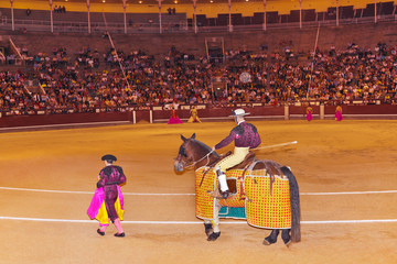 Matadors in bullfighting arena at Madrid