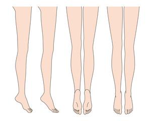 ボディパーツ脚