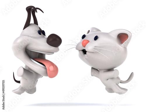 Fun cat and dog