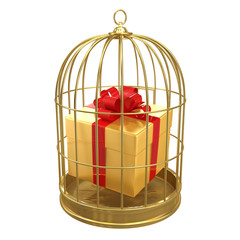 Birdcage with a gold present inside