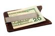 Dollars in money clip.