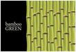 Fototapeten,bambu,grün,pflanze,stiel