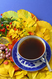 Cup of tea on autumn leaves on blue background