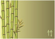 Fototapeten,bambu,gras,grün,hieroglyph