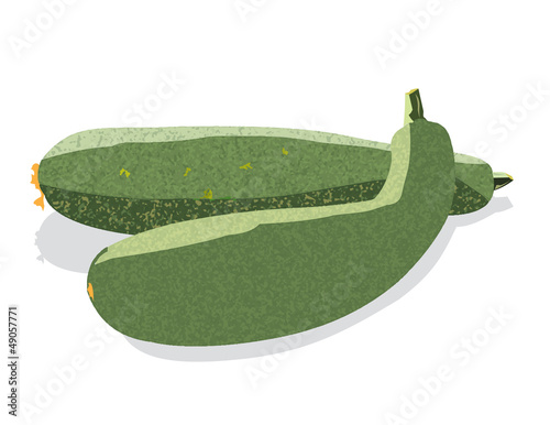 Two zucchini isolated on white background