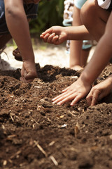 young children planting seeds in garden