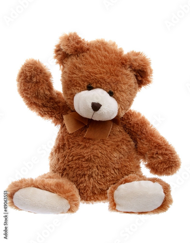 Teddy bear - 49063551