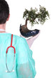 Surgeon with a bonsai tree