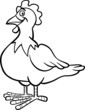 farm hen cartoon for coloring book