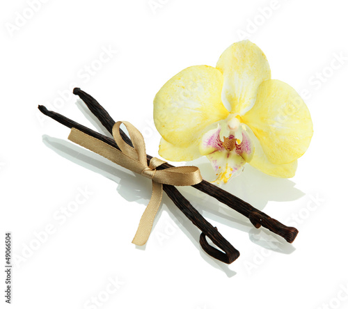 Vanilla pods with flower isolated on white