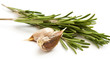 Fresh organic rosemary and garlic  isolated on white