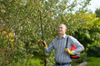 Man spraying tree plant