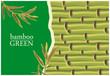 Fototapeten,bambu,pflanze,grün,ausreisen