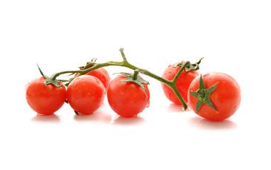 Tomates cerises en branche, fond blanc