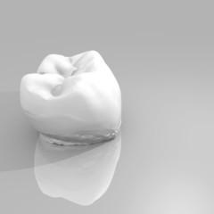 modello 3D di un dente su sfondo bianco