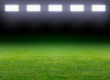 Green soccer field - 49076599