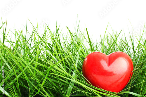 Red heart lying in green grass - isolated over white