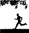 Man running in park in spring silhouette
