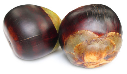 Borassus flabellifer or Tal fruit of Indian subcontinent